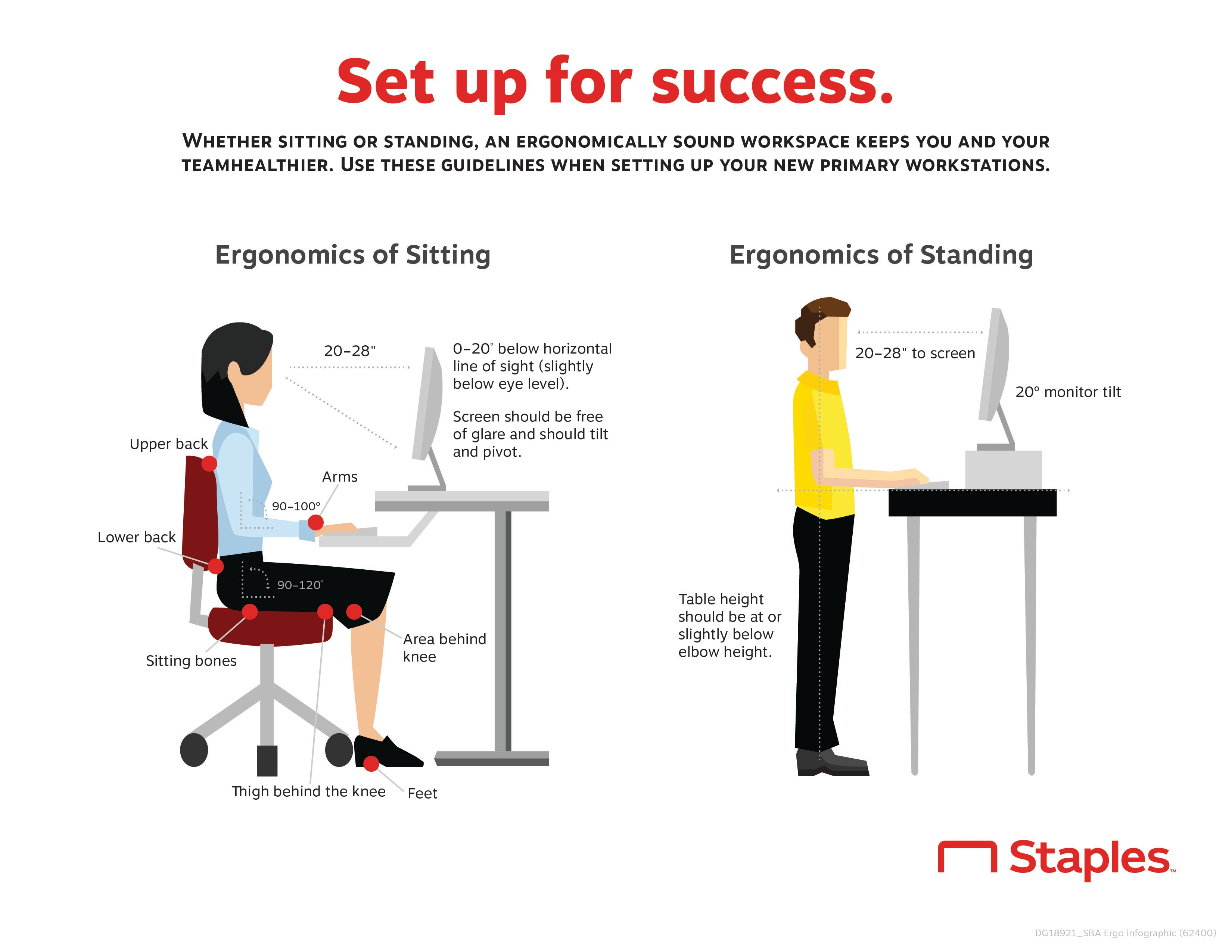 Ergonomics Made Easy: A Guide to Employee-First Ergonomics